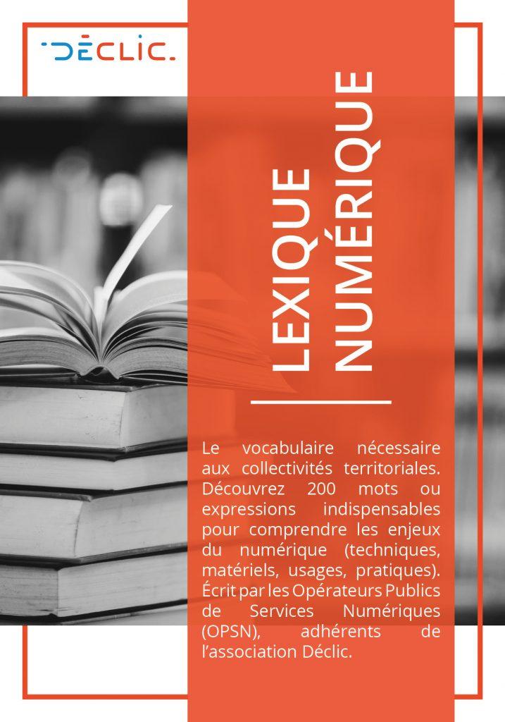 Lexique numerique Declic